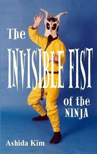 Ashida Kim - The Invisible Fist of the Ninja