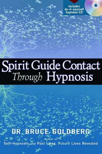 Bruce Goldberg - Spirit Guide Contact through Hypnosis