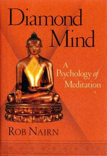 Rob Nairn - Diamond Mind - A Psychology of Meditation