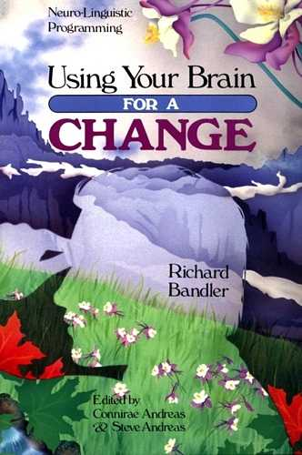 Richard Bandler - Using Your Brain for a Change