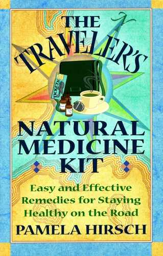 Pamela Hirsch - The Traveler's Natural Medicine Kit