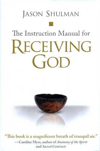 Jason Shulman - The Instruction Manual for Receiving God