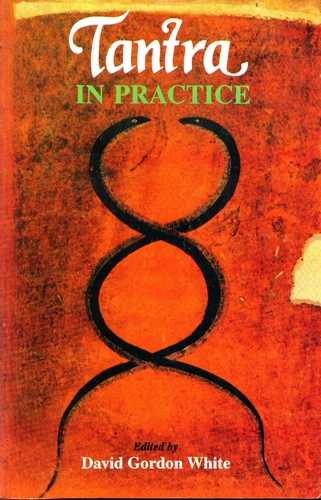 David Gordon White (ed.) - Tantra in Practice