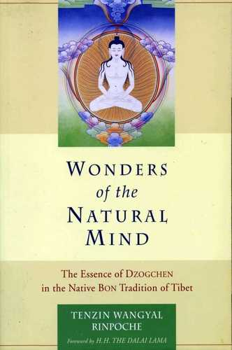 Tenzin Wangyal Rinpoche - Wonders of the Natural Mind