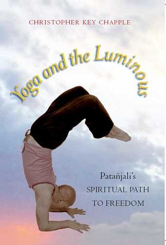 Christopher Chapple - Yoga and the Luminous